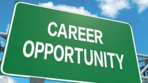 Peluang Kerja Magang di Bank BCA, Terbuka untuk Tamatan SMA