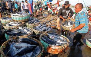 Dulu Sampai 2 Minggu, Kini Ngurus Izin Penangkapan Ikan Hanya 1 Jam, Begini Caranya