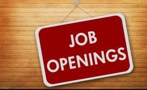 Rekrutmen BRI 2020, Pendidikan S1 Semua Jurusan