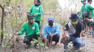 Tanam 1001 Bibit Mangrove, Rektor UISU Resmikan Pematang Tualang Sebagai Desa Mitra