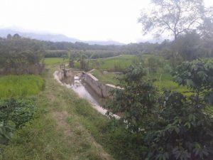 Program RJIT Bantu Petani Desa Pinagar Tapsel