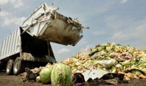 Tahukah Anda, Limbah Makananan Bikin Negara Rugi Rp551 Triliun Per Tahun