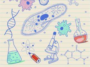 Apa Itu Biologi, Cabang Ilmu, Sejarah, Hingga Manfaatnya